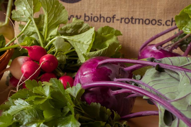 Biohof Rotmoos Gemüsetasche
